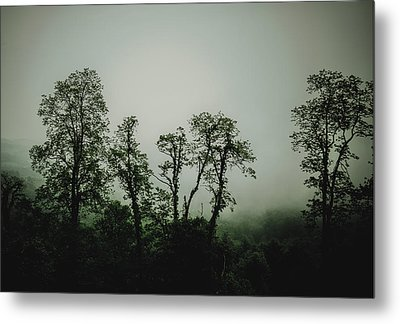 Metal Print featuring the photograph Foggy Mountain Morning At The Meadows Of Dan by John Haldane