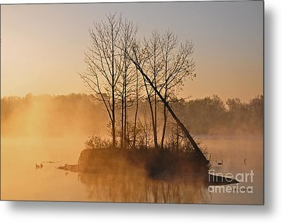 Foggy Ohio Morning Metal Print