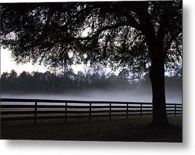Foggy Pasture Metal Print by Kathy Ponce