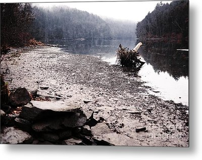 Foggy Shoreline Metal Print