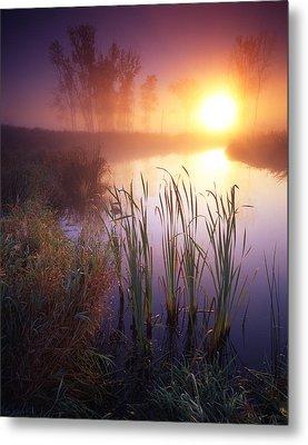 Foggy Sunrise Metal Print by Ray Mathis