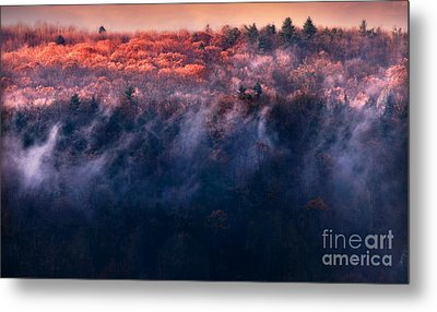 Foggy Sunset Metal Print by HD Connelly