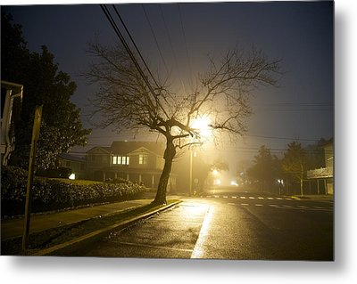 Foggy Tree Metal Print by Beau Finley