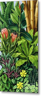 Foliage IIi Metal Print by Catherine Abel