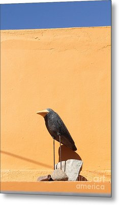 Folk Art Crow Todos Santos Metal Print by Linda Queally