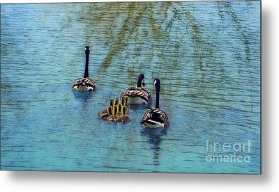 Follow The Leader Baby Metal Print by Peggy Franz