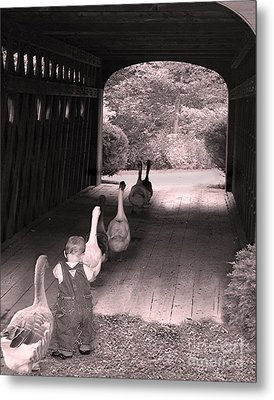 Follow The Leader Metal Print by Mary Lou Chmura