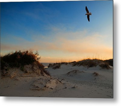 Metal Print featuring the photograph Follow Your Dreams by Laura Ragland