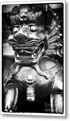 Foo Dog Metal Print by John Rizzuto