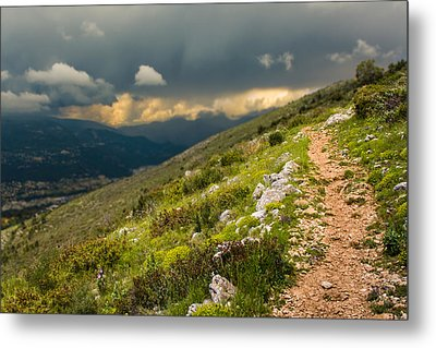 Foot Path Into The French Alps Metal Print