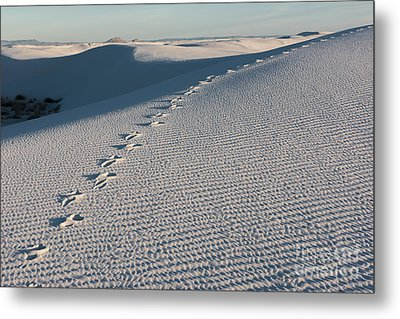 Foot Prints In The Sands Metal Print