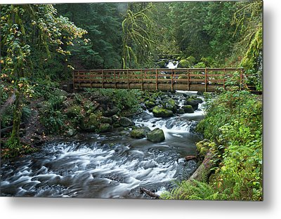 Footbridge Across Oneonta Creek Metal Print by William Sutton
