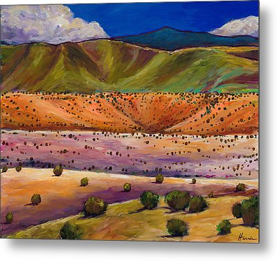 Foothill Approach Metal Print