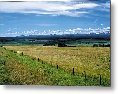 Foothills Of The Rockies Metal Print by Terry Reynoldson