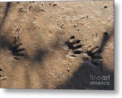 Footprints2 Metal Print