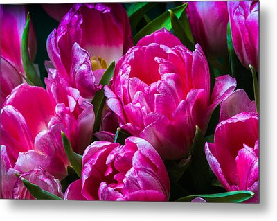 For You - Featured 3 Metal Print by Alexander Senin