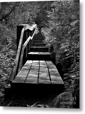 Forest Boardwalk Metal Print