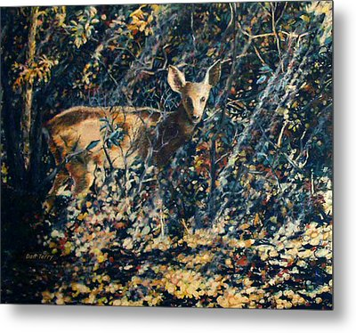 Forest Fawn Metal Print by Dan Terry