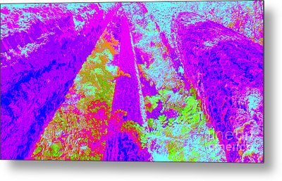 Metal Print featuring the photograph Forest Giants I by Ann Johndro-Collins