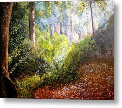 Forest Glade Metal Print by Heather Matthews