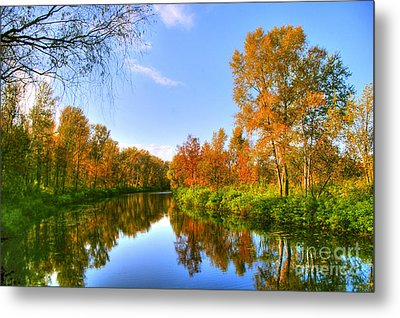 Metal Print featuring the photograph Forest Golden Green by Boon Mee