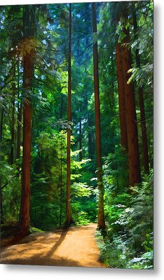 Forest Heights Metal Print by John Robichaud