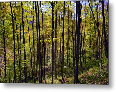 Forest Metal Print by Lanjee Chee