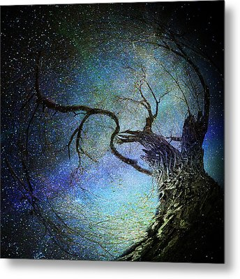 Forest Magic Metal Print by Michele Cornelius