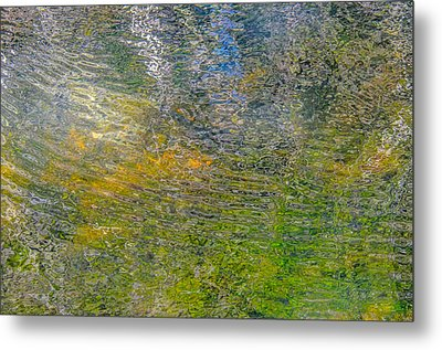 Forest Reflection Metal Print by Roxy Hurtubise