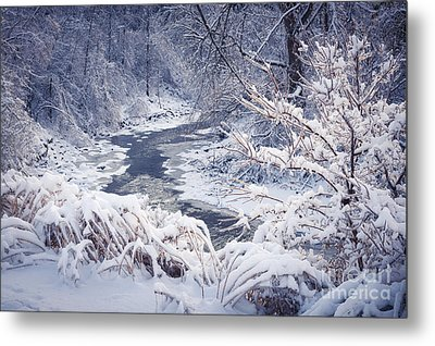 Forest River In Winter Snow Metal Print