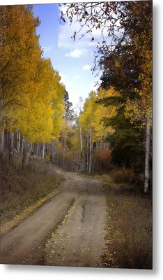 Forest Road In Autumn Metal Print by Ellen Heaverlo