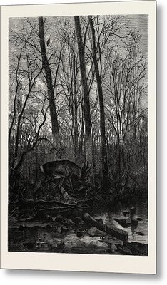 Forest Scene In Spring Metal Print by English School