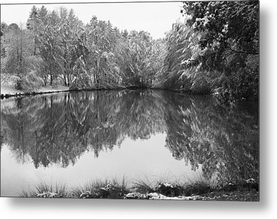 Forest Snow Metal Print by Miguel Winterpacht