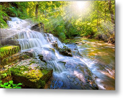 Forest Stream And Waterfall Metal Print by Alexey Stiop