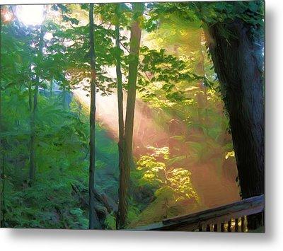Forest Sunbeam Metal Print