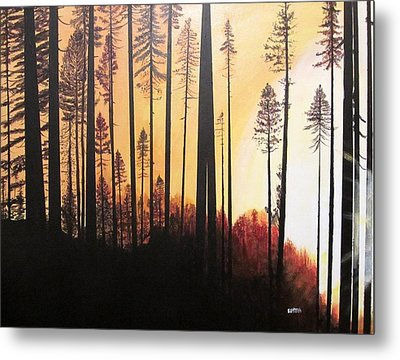 Forest Sunrise Metal Print
