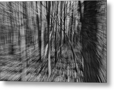 Forest Time B.w Metal Print