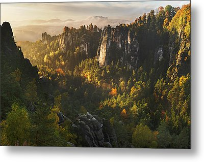 Forest Whispers Metal Print by Karsten Wrobel