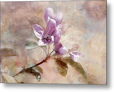 Metal Print featuring the photograph Forever Blossom by Elaine Manley