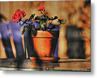 Forever Flower Metal Print by Kandy Hurley