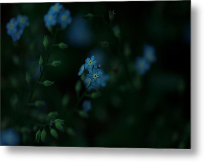 Forget Me Not 5 Metal Print