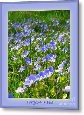 Forget Me Not Metal Print by Leone Lund