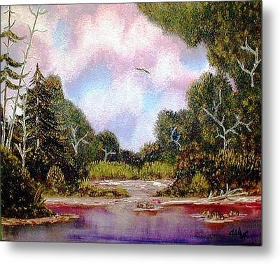 Metal Print featuring the painting Forgotten Inlet by The GYPSY And DEBBIE