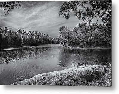 Fork In River Bw Metal Print by Mark Myhaver