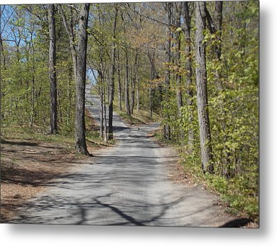 Fork In The Road Metal Print by Catherine Gagne