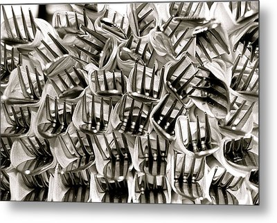 Forks Metal Print by Kim Pippinger