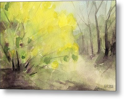Forsythia In Central Park Watercolor Landscape Painting Metal Print by Beverly Brown