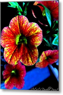 Fortinos Petunias Metal Print by Danielle  Parent