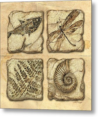 Fossils Metal Print by JQ Licensing
