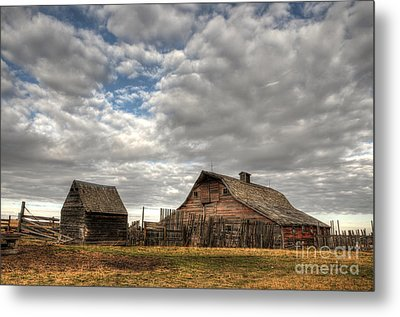 Found On The Prairies Metal Print by Vivian Christopher